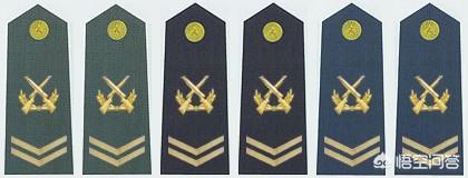 军士长是什么军衔,士官怎样才能晋升为军士长?
