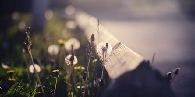 挽留的句子,想挽回一段感情的话 感动前任让分手变成过去