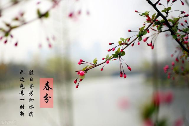 节日习俗,春分来啦,各地的习俗都有啥寓意呢,让我们跟着节气去养生吧
