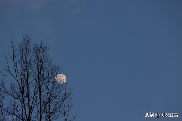下元节是什么节日,下元节的月亮与月光诗五首,雪月交光夜,瑶台十二层