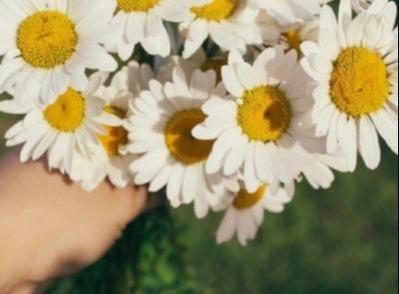 心情美美哒的简短句子,一日游微信朋友圈说说 开心一日游简短心情句子