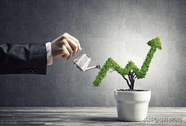 投资收益率,2021年的投资将是一个逐渐兑现收益率的过程