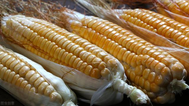 投资好项目,4个玉米深加工小本投资好项目,小康路上少不了