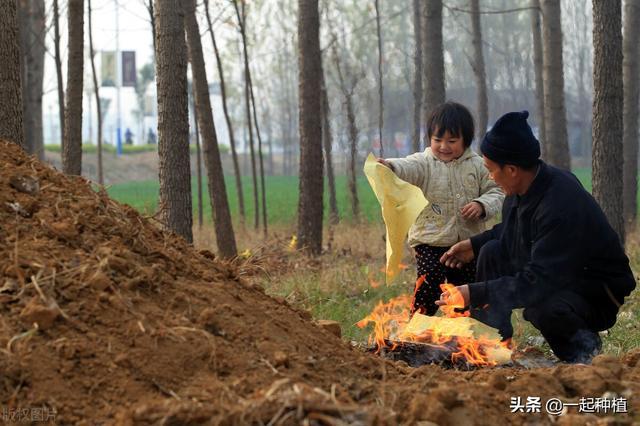 """清明节日期,农村俗语:""""清明上坟一大忌,焚香烧纸有时辰"""",是什么意思?"""
