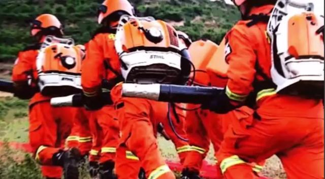 小学生防火常识五条,森林草原防火|森林灭火安全知识请查收!