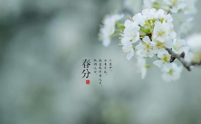 中国传统节日及风俗,春分的传统习俗有哪些?它们各自有什么含义