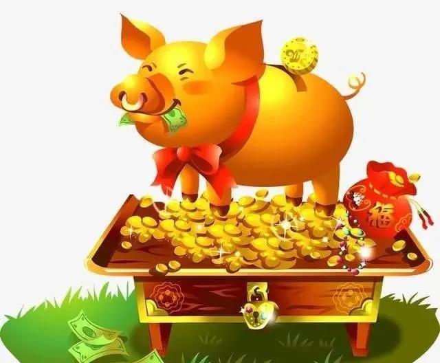 属猪今年的,2020是金猪年 你认同吗?