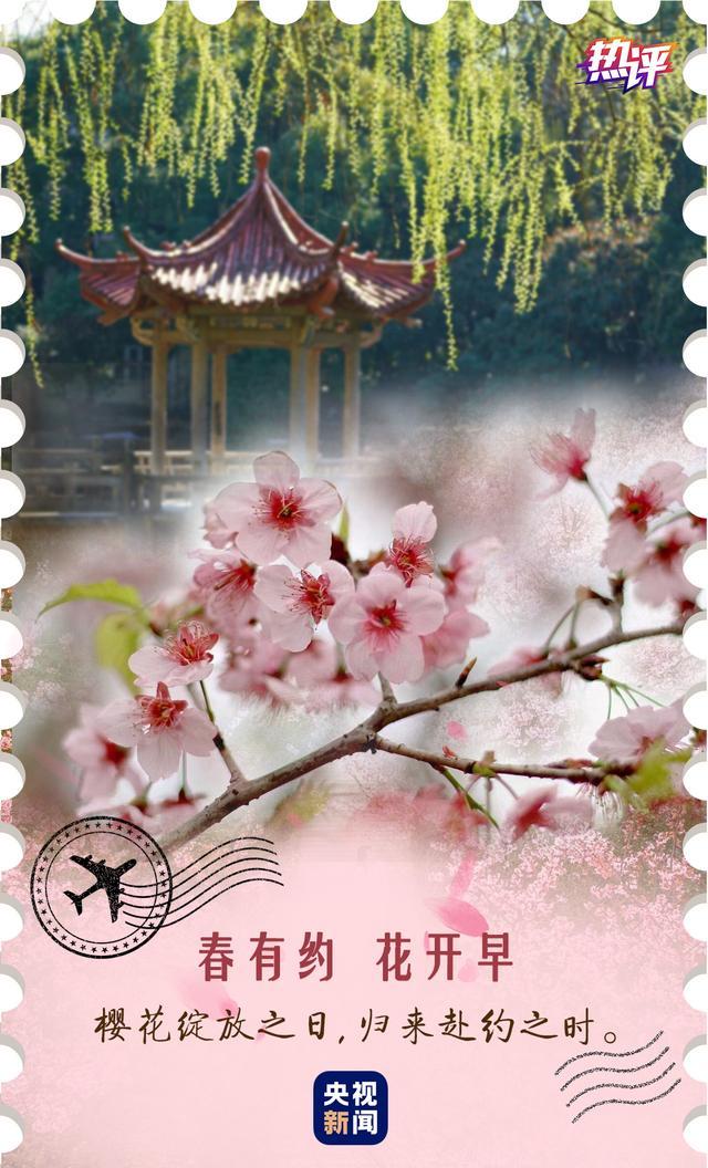关于春天的句子,热评丨春有约,花开早