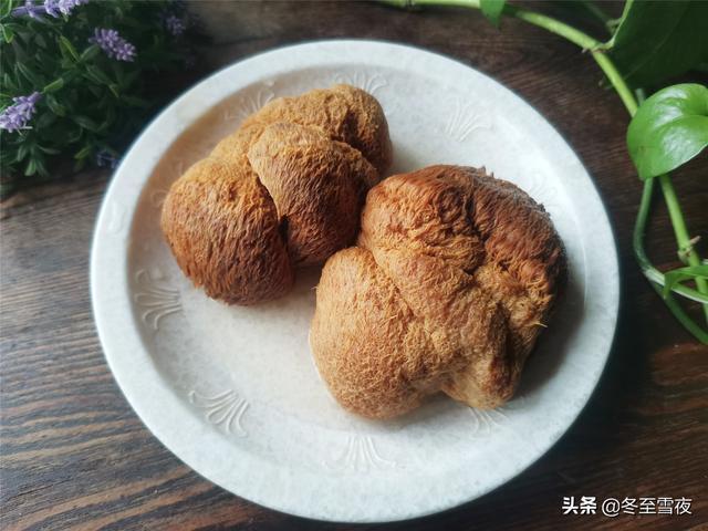 猴头菇的做法,干猴头菇泡发的小技巧,无论烧菜或者煲汤,都没有一点苦味