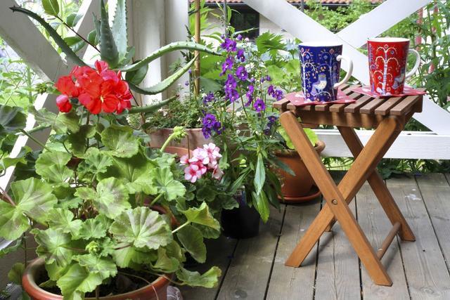 花卉园林,学会以下园林花卉的栽培技术,即使新手小白,也很容易上手!