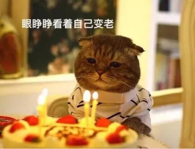 过生日发朋友圈的句子,致自己生日感悟的句子,自己生日发朋友圈的说说:承蒙时光不弃