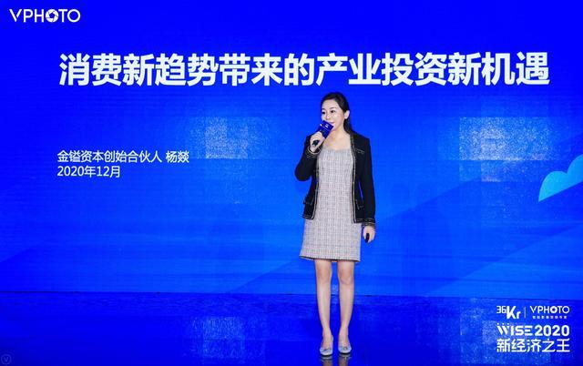 消费投资,金镒资本杨燚:消费是未来十年最大的结构性投资机会|WISE2020 新经济之王新消费峰会