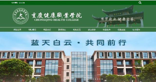 投资人,重庆首例民办高校重整案招投资人,重庆健康职业学院将凤凰涅槃