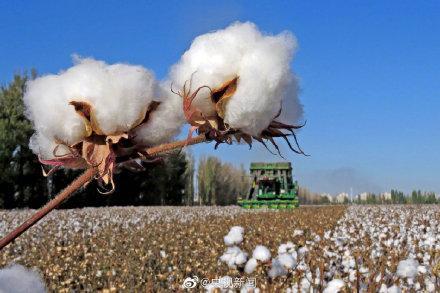 人民币是棉花做的 全球新闻风头榜 第2张