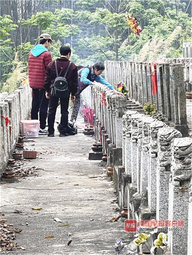 清明节日期,注意了!清明节期间南宁部分墓园需要预约,提倡减少祭扫人数