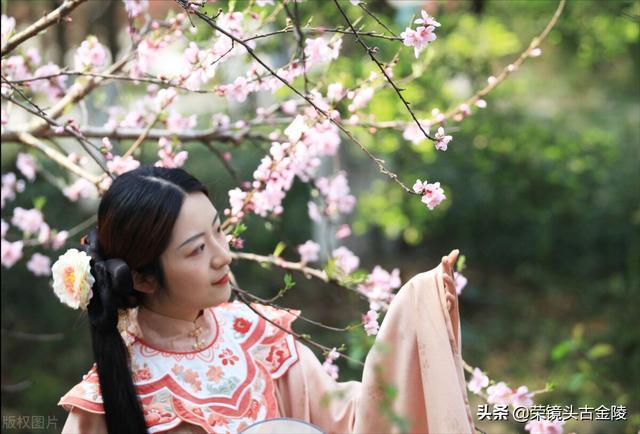 桃花依旧笑春风的上一句是什么,南京:春到金陵 桃花依旧笑春风