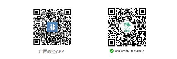 广西高考成绩查询,广西数字政务一体化平台、广西政务APP可以查询高考分数啦!