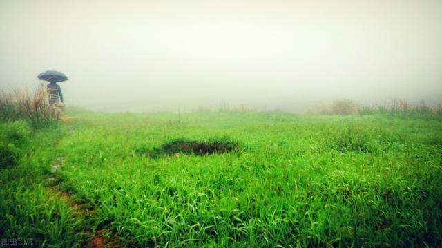 下雨的句子,清明时节,雨纷纷而落,所有的语言都过于苍白,沉默是最好的表达