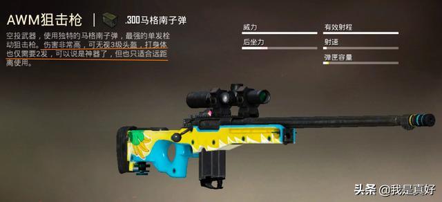 射手和射手,和平精英射手步枪和狙击枪哪个好?