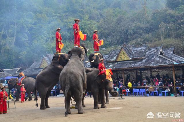 云南有什么著名的旅游景点?插图4