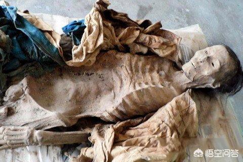 中国有趣的历史知识  有哪些关于历史的冷知识?