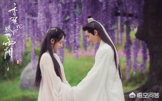 你最喜欢杨紫哪部电视剧?