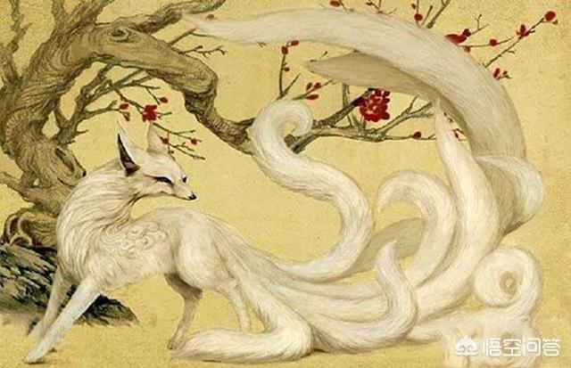 轩辕传奇万劫窟怎么打(狐狸精为何会从祥瑞变成淫兽?
