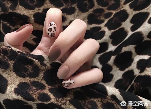 美甲图案豹纹:冬天涂什么颜色的指甲油比较时髦?(相关长尾词)