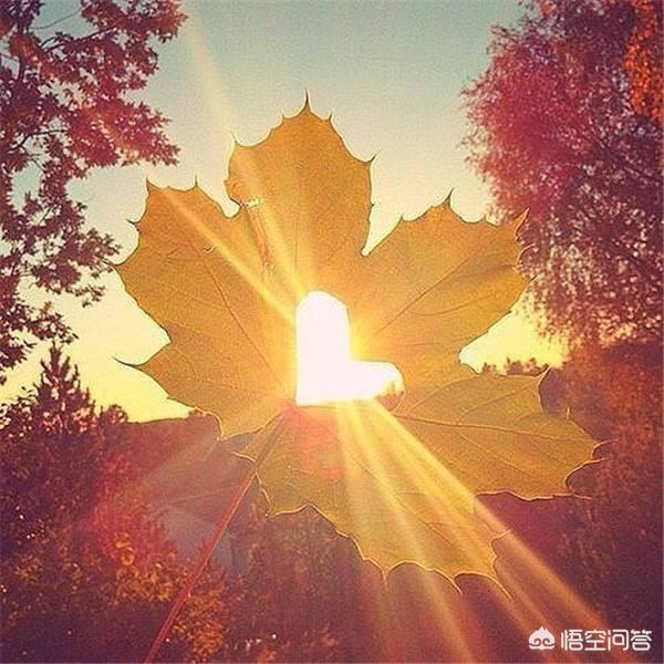 阳光向上有朝气的图片,如何做一个阳光乐观的人?