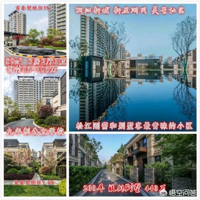 屠夫小姐 :上海工作嘉兴买房