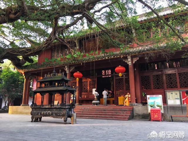 广州附近有哪些自驾游好地方 自驾游,广州周边有哪些好玩的地方推荐?插图1