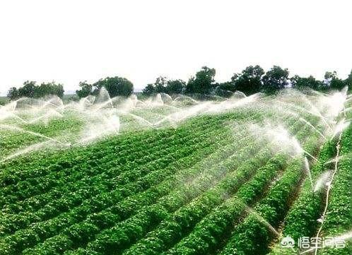 农业灌溉如何选择灌溉设备呢?