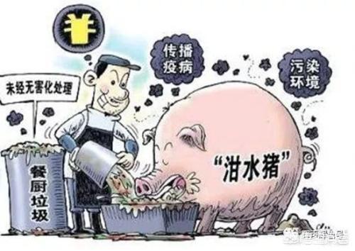 贫困地区那时不许用废油养鸡了,你们家吃加蛋怎么处置?如何节能环保环境卫生?如果贫困地区搞养殖一年能赚