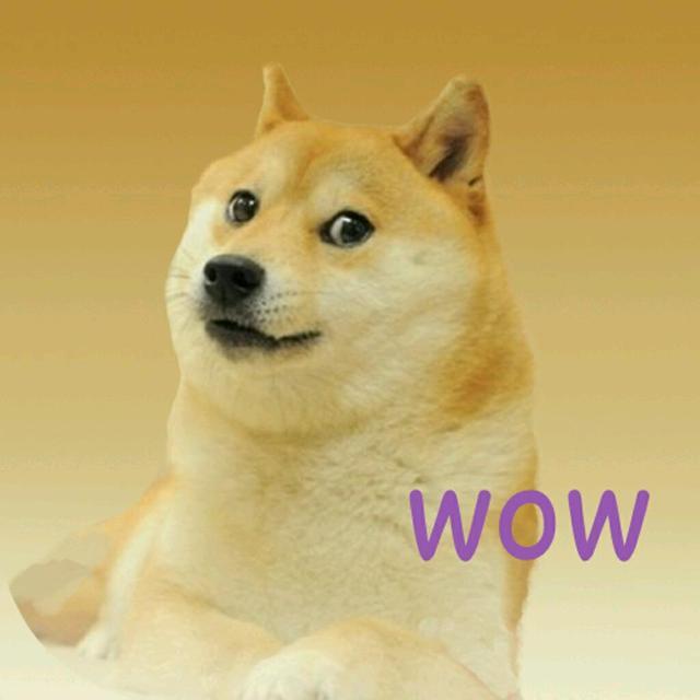 有哪些狗狗品种属于皇室贵族?
