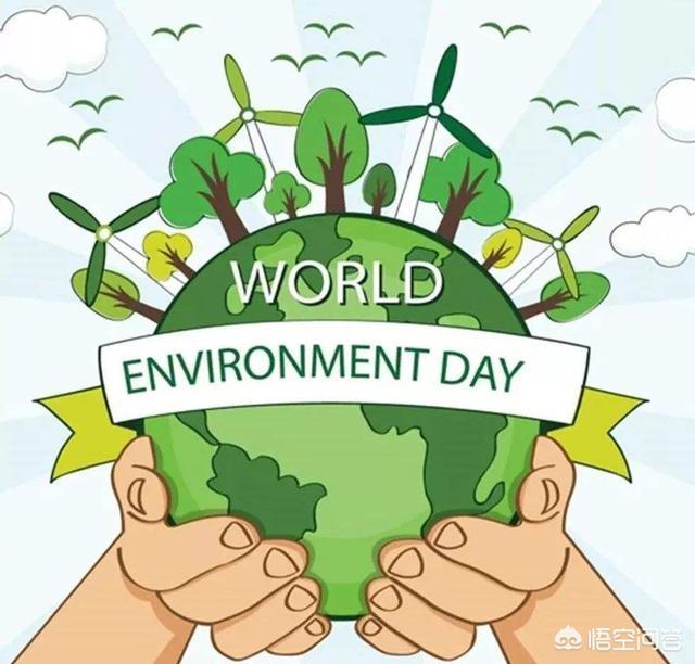 世界环境日是哪一天(世界环境保护日是什么时候)