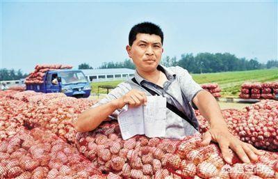 目前大蒜的价格不断上涨,你觉得现在囤一些大