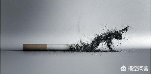 赵保路快乐戒烟法(赵保路快乐戒烟法价格)