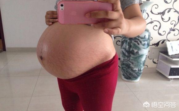怀孕13周胎儿图片欣赏,13周的胎儿是什么样的?