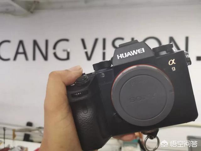 佳能相机所有型号大全,佳能单反相机各型号的区别是什么?