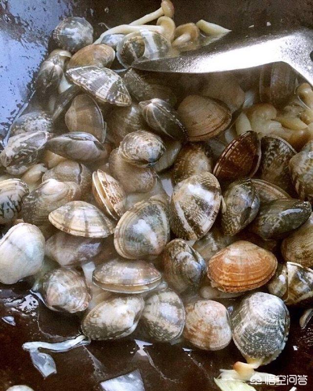 菇蚬子汤的做法,海鲜菇蚬子汤怎么做好吃?