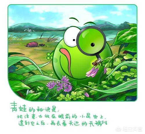 画青蛙的简笔画,青蛙是怎样捕捉客虫的简笔画?