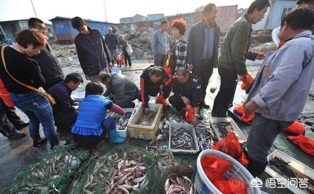 营口哪里买海鲜便宜  辽宁省营口哪里买的海鲜好