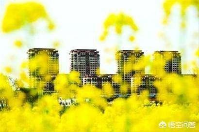 """如何看待央行旗下报纸刊文:切忌炒作楼市""""小"""