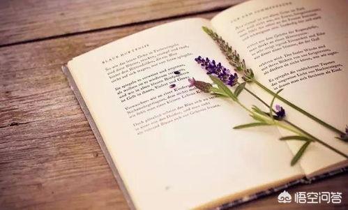 (十句关于读书的名言 关于读书的名言最好的)关于读书的名言至少十句?