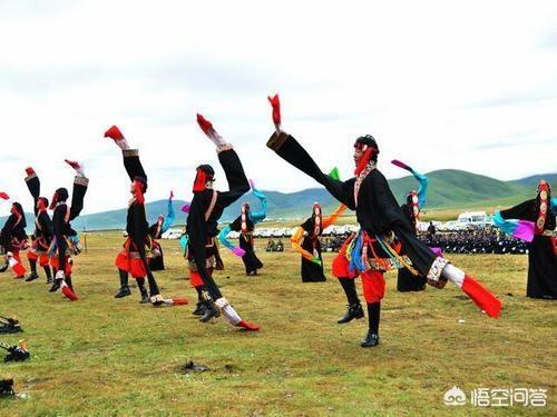 藏族舞蹈基本动作,藏族舞马兰谣基本知识点?