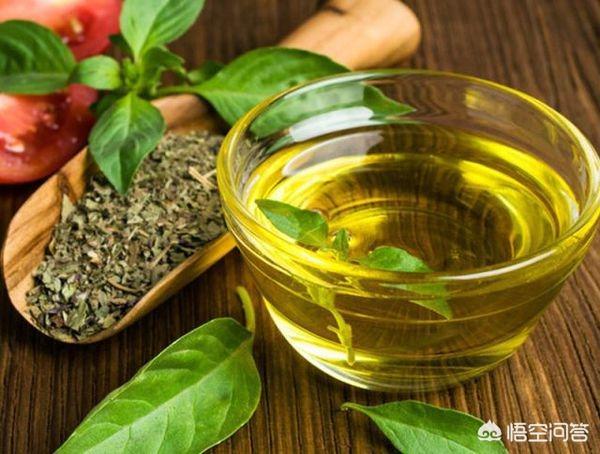 茶油的好处(茶油的好处和作用)