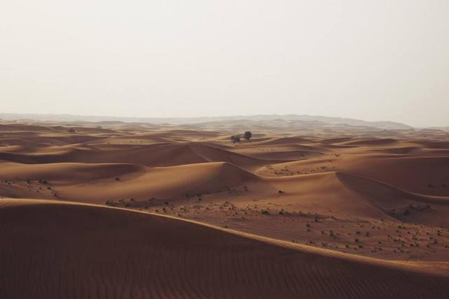 世界最热的沙漠 如果把全世界的沙漠都变成绿洲