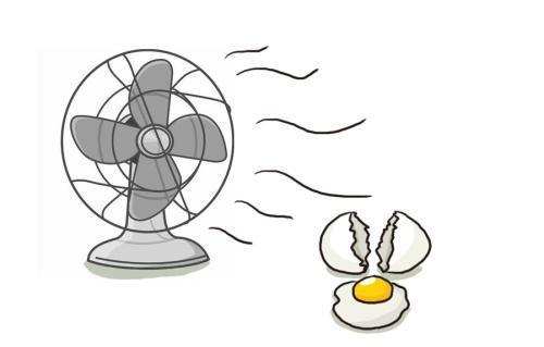 蛋壳指的是什么?蛋壳指的是什么?