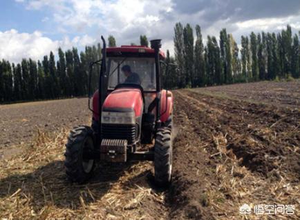 (一般什么土壤比什么土壤宜耕期长)玉米种植有必要耕翻土壤吗?耕翻带来的价值是什么?