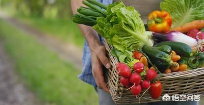 利用网络销售农产品的模式有哪些?